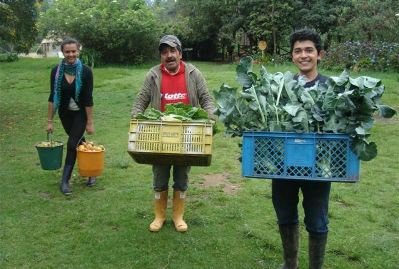 Where to volunteer in Colombia. Check it out.