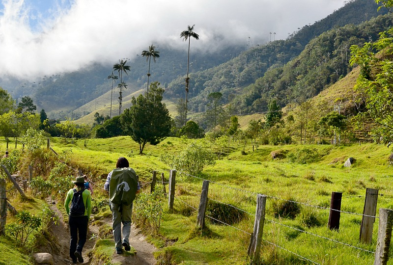 8 Hikes in Colombia worth exploring