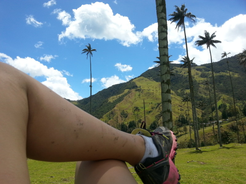 Trekking in Colombia through the Cocora Valley