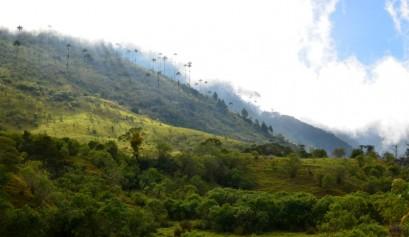 Trekking in Colombia